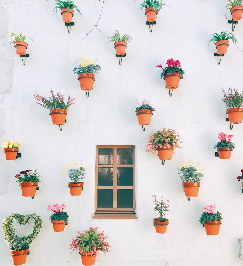 Shima Spain Mura