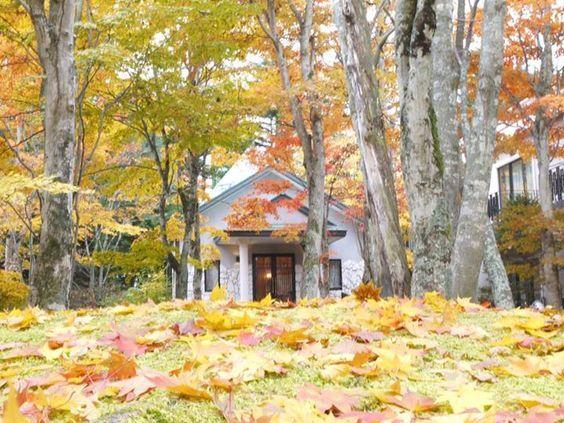 Momiji trải khắp Karuizawa