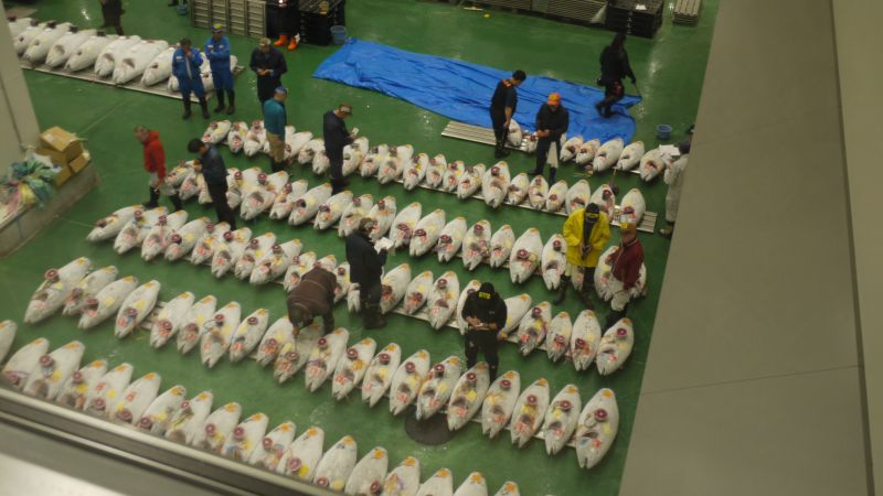 Chợ cá Toyosu