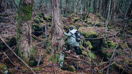 rừng tự sát Aokigahara