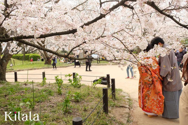 hẹn hò dã ngoại ở công viên Tokyo