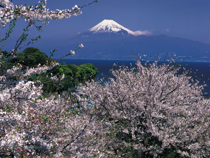 日本平からの眺め