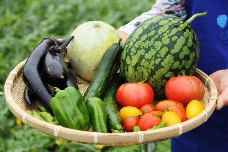 thực phẩm hữu cơ là gì ?