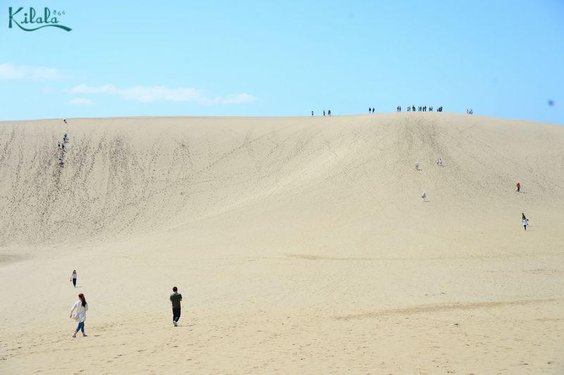 Đồi cát