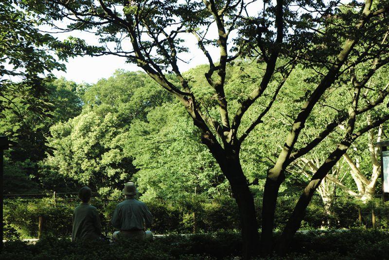 công viên thư giãn cuối tuần ở Tokyo