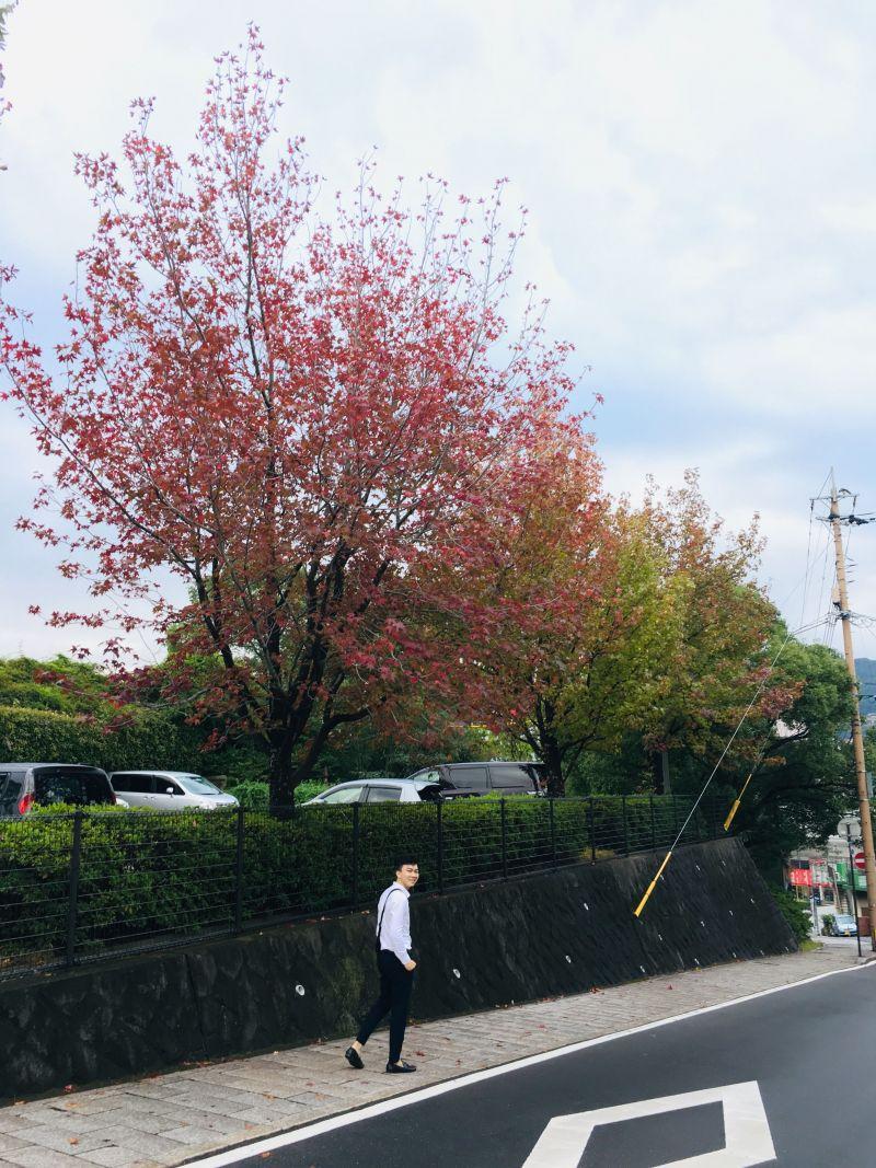 Đường phố Nagasaki