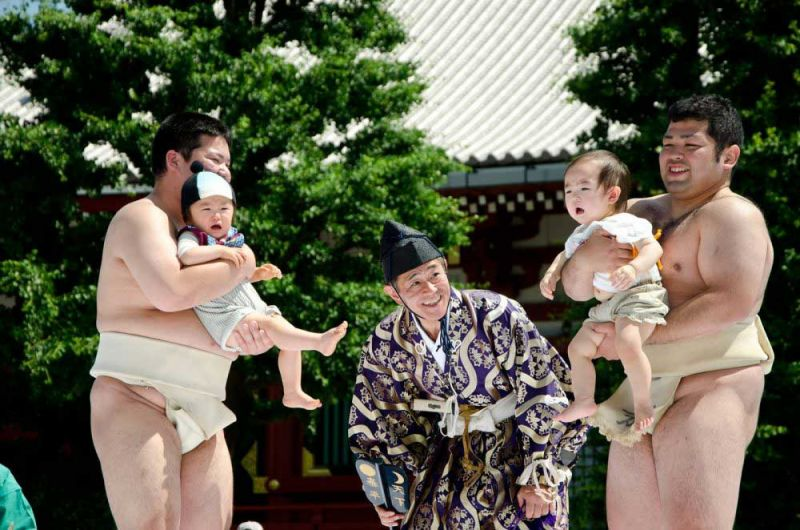 lễ hội Sumo Khóc