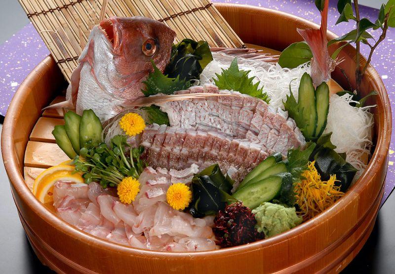 cá tai là cá gì