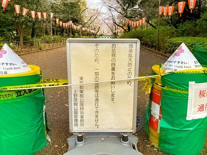 Nhật Bản mùa COVID-19