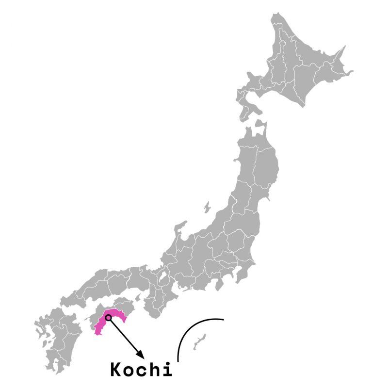 Tỉnh Kochi
