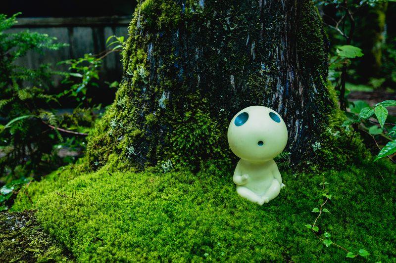 tượng Mộc Linh ở Yakushima