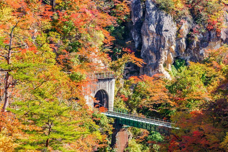 những hình ảnh gợi nhớ đến mùa thu Nhật Bản