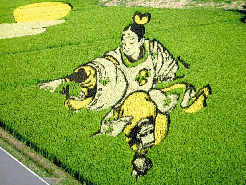 Nghệ thuật vẽ tranh trên đồng ruộng độc đáo của Nhật Bản