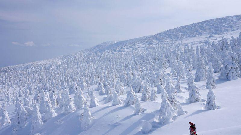 điểm đến mùa đông Nhật Bản
