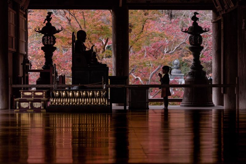 bộ ảnh xúc động về cô con gái ở chùa Hasedera của nhiếp ảnh gia người Nhật