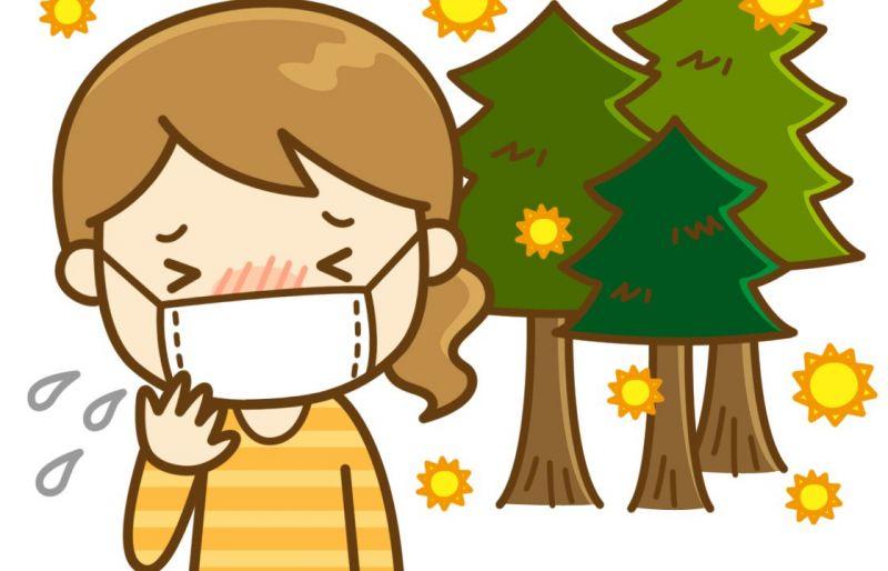 dị ứng phấn hoa ở Nhật và những điều bạn cần biết