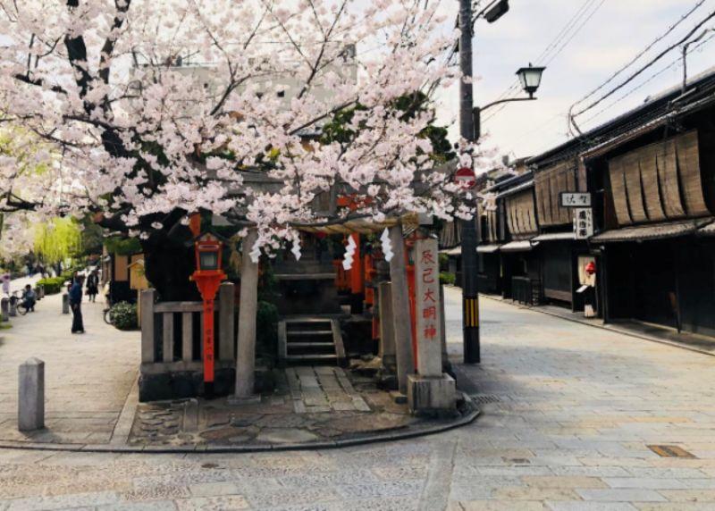 geisha tại Kyoto chống chọi với dịch COVID-19 như thế nào