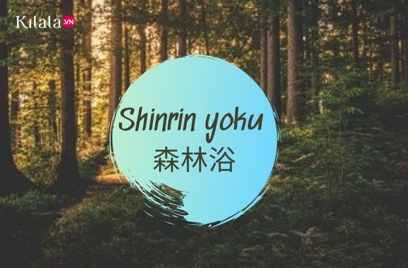 những từ ngữ xinh đẹp trong tiếng Nhật