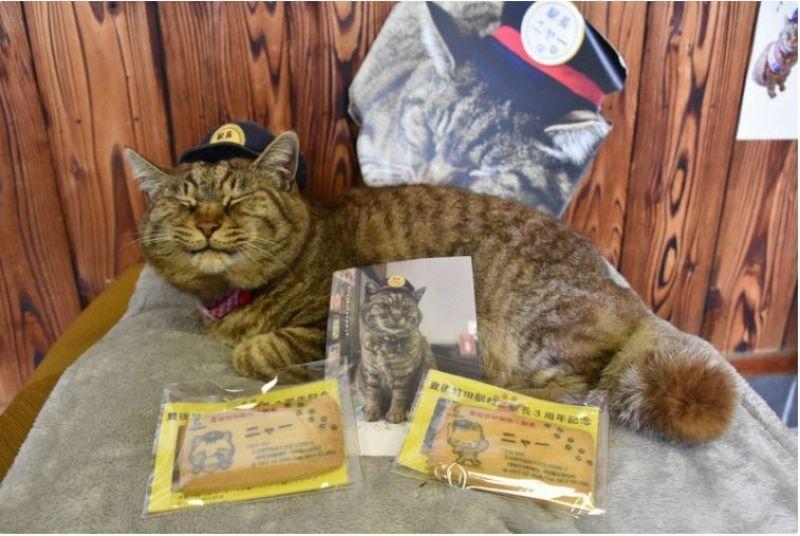 chú mèo Nya kỷ niệm 3 năm nhậm chức trưởng ga
