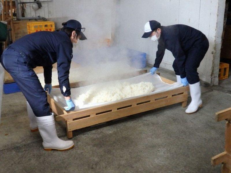 khôi phục rượu Sake thời Edo nhờ công thức ghi trong sách cổ