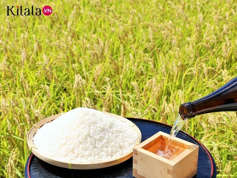 lý do khiến Niigata thành vương quốc rượu Sake nổi tiếng